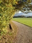 Casa Beichlen Herbst-Wald Spaziergang IMG 8429